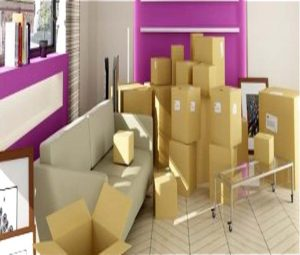 movers-and-packers-al-ain